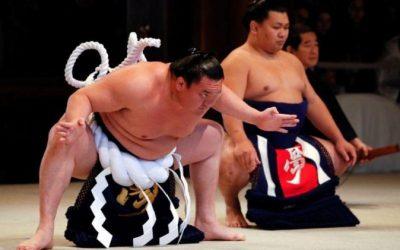 El noble arte del sumo